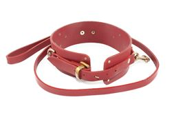 Picture of Collar & Lead